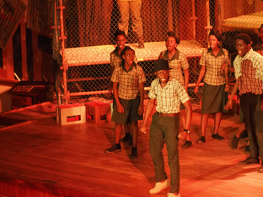 essay on sarafina