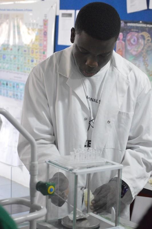 Tema International School - DNA extraction experiment